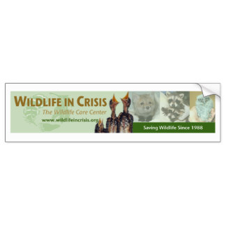 wildlife_in_crisis_bumper_sticker-rcd7391213fb84414be3de9f403bbf7c1_v9wht_8byvr_324