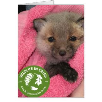 wildlife_in_crisis_card-rbf3c2323af754590ab57757f054e72b0_xvuat_8byvr_324