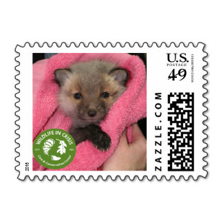 wildlife_in_crisis_fox_postage_stamps-r147c9d8d13184e8db20a70a419ad93ba_zhon1_8byvr_324